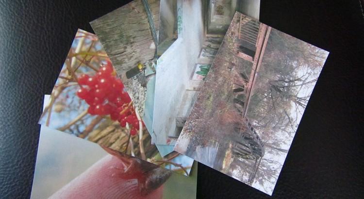Kretycards-03_web